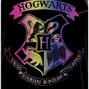 Harry Potter Rainbow Hogwards Raglan Gown 10/12